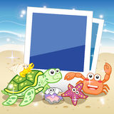 Decorative frame for photo with tropical bright fishes Royalty Free Stock Photo
