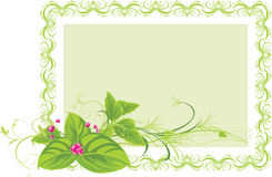 Decorative frame with spring flowers Royalty Free Stock Images