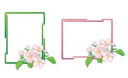 Decorative frames with apple-tree flowers - vector. Decorative frames with apple-tree flowers  - vector Stock Photos