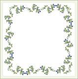Decorative framework with blackberry.Greeting card. Illustration blackberry Royalty Free Stock Photo