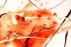 Decorative fruit and chocolate splash with vanilla sauce and raspberry Royalty Free Stock Image