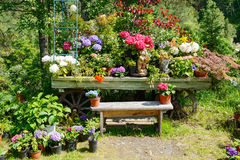 Decorative garden bench Royalty Free Stock Images
