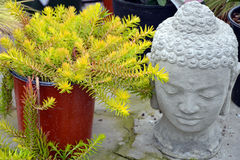 Decorative garden buddha Royalty Free Stock Image