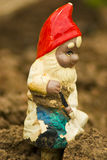 Decorative garden gnome. Closeup of decorative garden gnome digging in soil royalty free stock image
