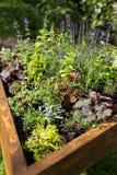 Decorative garden Royalty Free Stock Photo