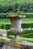 Decorative gardens Stock Photography