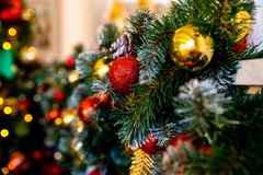Decorative garland from christmas tree branches and cones. home decorated for winter holidays, little red and gold. Decorative garland from christmas tree royalty free stock images