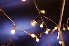 Decorative garland lights Royalty Free Stock Photo