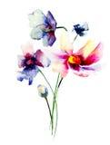 Decorative Gerber flowers Royalty Free Stock Image