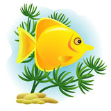Decorative golden fish Stock Images