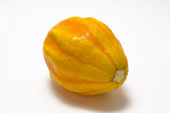 Decorative gourd Stock Images