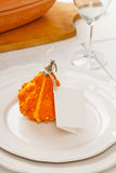 Decorative gourd Stock Photography