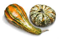 Decorative Gourd and Pumpkin Stock Photo