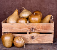 Decorative gourds in a crate Royalty Free Stock Photos