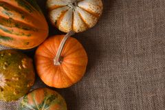 Decorative gourds and pumpkins on a burlap surface royalty free stock images
