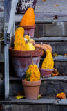 : Decorative gourds in terra cotta pots Royalty Free Stock Image