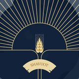 Decorative grain ears to create design compositions. The Jewish holiday of Shavuot. Symbols of the harvest and. Template in a minimalist style to create labels Stock Image