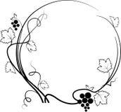 Decorative grape illustration (sketch) Stock Photo