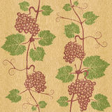 Decorative grape leaves - seamless background - White Oak wood texture Royalty Free Stock Images