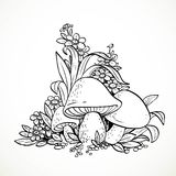 Decorative graphics mushrooms and flowers Stock Photography