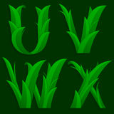 Decorative Grass Initial Letters U, V, W, X. Royalty Free Stock Images