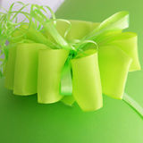 Decorative green bow Royalty Free Stock Image