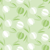 Decorative green color tulip flower seamless pattern. Stock Photography