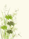 Decorative green floral background. With dragonfly Royalty Free Stock Photos