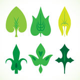 Decorative green leaves pattern set isolated on white . Va. Rious shapes of green leaves. Elements for eco and bio logos Royalty Free Stock Image