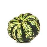 Decorative Green Squash Stock Images