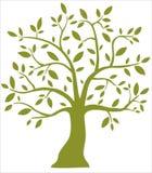 Decorative green tree Stock Photos