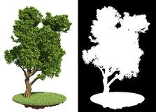 Decorative Green Tree with Detail Raster Mask. Royalty Free Stock Photo