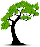 Decorative Green Tree Silhouette With Green Leaves And Wind Stock Image