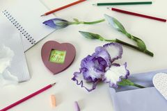 Decorative greeting composition of the inscription be happy, irises, pencils, empty notebooks on the table. Top view stock photos