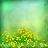 Decorative grunge green background Royalty Free Stock Photos