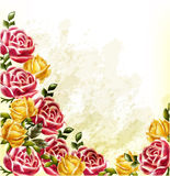 Decorative grunge vector background with roses. Elegant vector background with roses painted in watercolor retro style Stock Photo