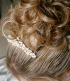 Decorative Hair Style. Detail of top of woman's head showing formal hair style and accessory Royalty Free Stock Image
