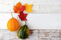Decorative Halloween and autumn frame with pumpkins on white wooden background. Owerhad view Royalty Free Stock Image