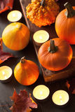 Decorative halloween pumpkins and candles Stock Photography