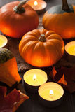Decorative halloween pumpkins and candles Stock Images