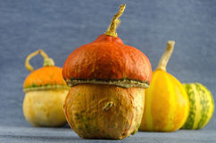 Decorative Halloween pumpkins on the table Royalty Free Stock Images