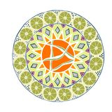 Decorative hand drawn mandala with different geometrical element stock image