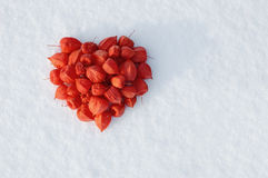 Decorative heart. On to snow Royalty Free Stock Images