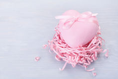 Decorative heart in nest Stock Images