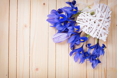 Decorative heart and spring flowers Royalty Free Stock Image