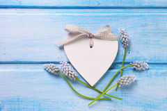 Decorative heart and tender flowers muscaries  on blue painted w Stock Photography