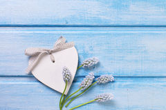Decorative heart and tender flowers muscaries Royalty Free Stock Images