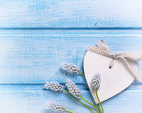Decorative heart and tender flowers muscaries Stock Photography