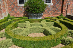 Decorative hedge in garden Royalty Free Stock Photo