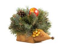 Decorative hedgehog isolated Stock Images
